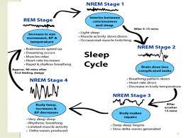 Normal Sleep Pattern Best Normal Sleep And Sleep Disorders