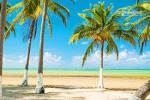 imagem de Paripueira Alagoas n-18