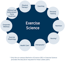 Careers With Exercise Science Degree Undergraduate On Campus And Online Exercise Science Degrees