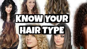 Type Of Hair Style know your hair type types of hair indian hairs hair basics 4083 by wearticles.com