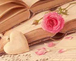 Pink Rose Love Heart Books (5616x3744 ...