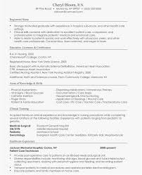 Best Resume Format 2018 Stunning Most Accepted Resume Format Professional 44 Best Cv Formats