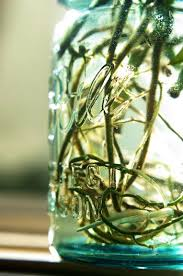 Rooting a Devils Ivy Plant in a Mason Jar | Paul Cram Actor | Ivy plants,  Mason jar plants, Ivy plant indoor