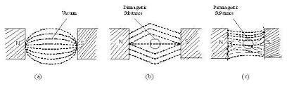 Diamagnetic Paramagnetic Ferromagnetic Substances Assignment Help
