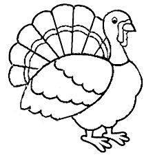 Small Picture Thanksgiving Turkey Coloring Page