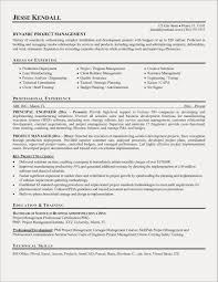 Project Coordinator Resume Samples Best Sample Resume For Project
