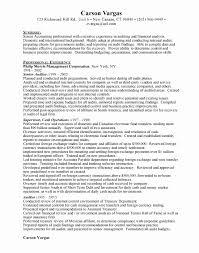 Senior Auditor Resume Senior Auditor Free Resumes Job Resume Writing