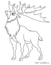 Small Picture Kawaii reindeer coloring pages Hellokidscom