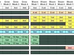 House And Garden 8 Week Feed Chart Buy House And Garden Nutrients Helpinghandsyangon Org