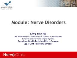 british european hand diploma revision nerve disorders
