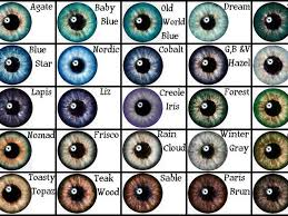 Parent Eye Chart Who Is Your Greek Goddess Parent Eye Color Chart Writing