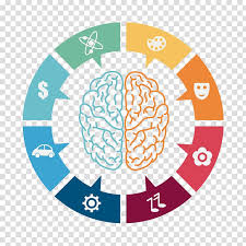 Game Chart Illustration Lateralization Of Brain Function