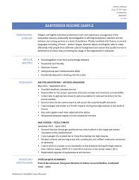Ideal Skills For Resumes Line Cook Example Resume Building New