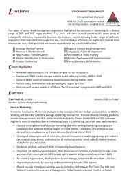 Retail Sales Executive Resume Retail Sales Resume Sample Resume Samples For Retail Sales Associate