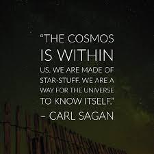 40 Precious Carl Sagan Quotes About The Cosmos Carl Sagan Quotes Custom Carl Sagan Love Quote