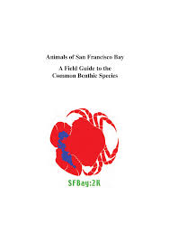 Of Common To Francisco Animals Field A Bay San Its Pdf Guide vapqwq