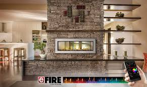 napoleon see thru vector 50 gas fireplace lv50 2