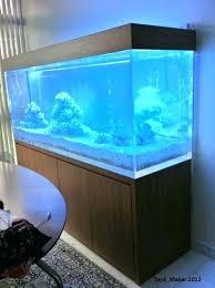 acrylic fish tank diy aquarium divider 1