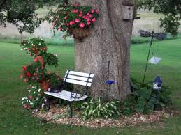Tree landscaping ideas White Pine Landscaping Around Trees Ideas You Should Not Miss Top Dreamer Landscaping Around Trees Ideas You Should Not Miss