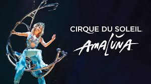 Cirque du Soleil in Italia con Amaluna, le date, i biglietti dello  spettacolo - 100tour