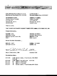 rabies vaccination certificate sugars rabies certificate