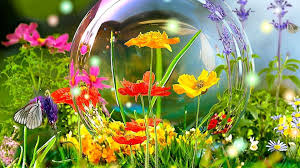 hd yellow flower wallpapers 1080p flowers colorful yellow erfly spring bubble desktop flower pictures 1920
