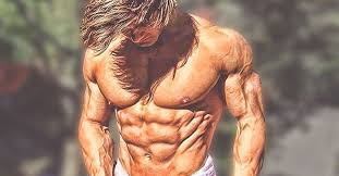 workout plan to getting shredded