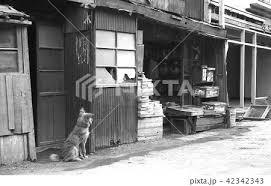 昭和の風景 下町の駄菓子さん 東京都葛飾区にて 昭和36年 の写真素材