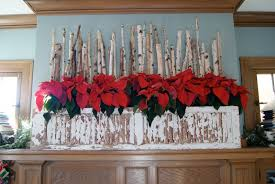 gallery of birch logs for fireplace display ideas with log display fireplace