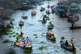 Image result for sông cửu long