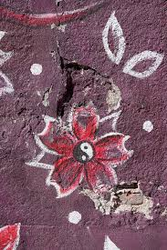 <b>Yin yang</b> lotus <b>flower</b> on damaged <b>wall</b> by Marcel - Stocksy United