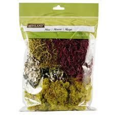 Moss Mats Ashlandar Moss Variety Pack