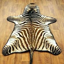 zebra skin rug south africa real zebra rug the zebra skin rugs for south zebra zebra skin rug