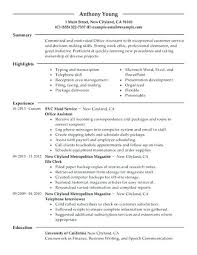 Administrative Resume Sample It Resume Examples Executive Resume