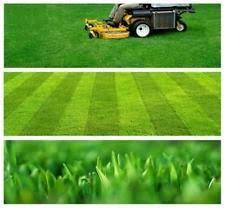 Lawn Mowing Zero Turn Lawnmower Business Plan Ebay