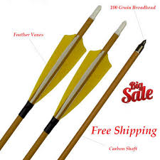 Other Carbon Arrows