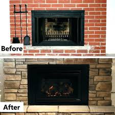 best gas fireplace inserts insert s reviews regency with regard to