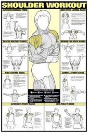 Gym Workout Chart Details About Shoulder Workout Wall Chart Professional Strength Training Fitness Gym Poster