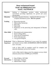 sample clerk resumes