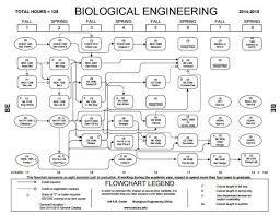 Biology Flowchart Lsu Www Bedowntowndaytona Com