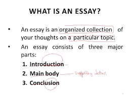 what ia an essay images how do i format an essay essay what ia an essay lecture 17 essay writing ppt