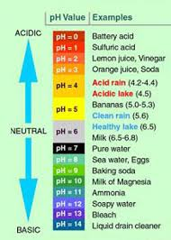 Ph Level Chart For Urine 57 Described Ph Level Chart For Food