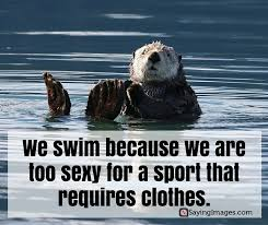 Swimming Quotes Enchanting 48 Fun And Motivational Swimming Quotes SayingImages