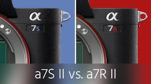 Sony A7s Ii Vs A7r Ii Test Which One Is Right For You