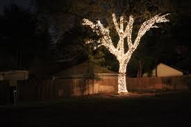 Christmas tree lighting ideas Fairy Home Organizationbackyard Christmas Tree Lighting Ideas With Many Small Outdoor Lamp And New Christmas Pinterest Home Organization Backyard Christmas Tree Lighting Ideas With Many
