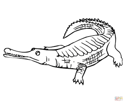 Small Picture Coloring Pages Animals Gharial Coloring Page Crocodile Coloring