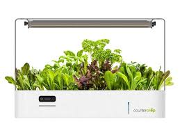 plant your kitchen garden in with this countertop led
