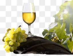 Pinot Gris PNG and Pinot Gris Transparent Clipart Free Download. - CleanPNG  / KissPNG