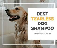 popular tearless dog shampoos