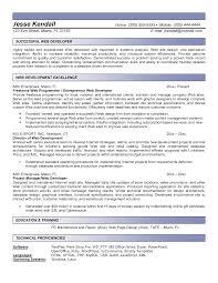 Resume Web Programmer Resume